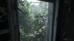 a tree next to a window