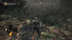 a screenshot of a video game in a forest