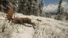 a brown horse grazing in a snow covered field