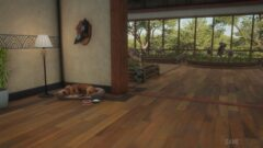 a cat lying on top of a wooden floor