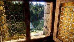 a giraffe standing next to a window