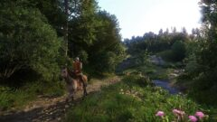 a person riding a horse in a forest