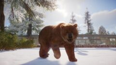 a large brown bear walking in the snow