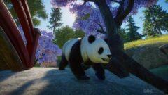 a panda bear walking across a street