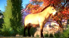 a brown horse standing next to a forest