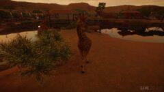 a giraffe is crossing a dirt road