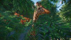a giraffe standing next to a palm tree