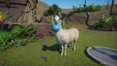 a sheep is standing in the grass