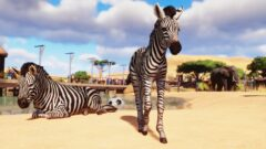 a zebra standing on top of a dirt field