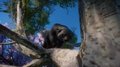 a bear that is sitting on the branch of a tree