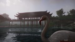 a swan next to a body of water