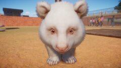 an animal looking at the camera