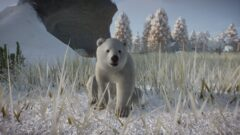 a polar bear standing on top of a grass covered field