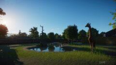 a giraffe standing in the grass