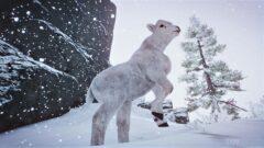 animal on the snow