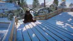 a cat sitting on top of a wooden fence