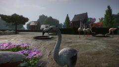 a swan in a garden
