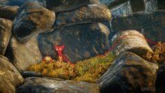 a bird sitting on a rock