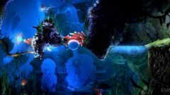 underwater view of a christmas tree